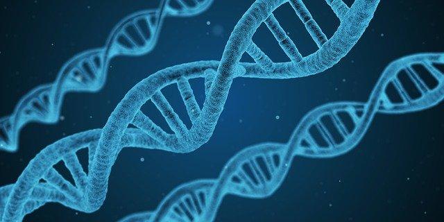 badania-genetyczne-rak-piersi